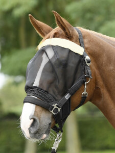 Busse fly mask combi