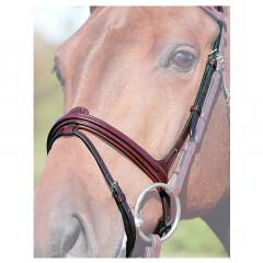 Dyon flash noseband