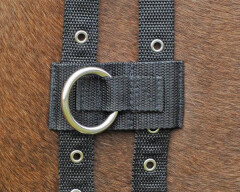Busse side reins ring